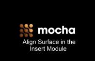 MochaAlignSurfece