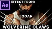 wolverine_claws